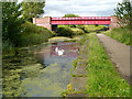 SD7807 : Manchester, Bolton and Bury Canal, Radcliffe by David Dixon