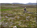 NO4682 : Mountain biker on moor above Arsallary near Glen Esk in Angus by ian shiell