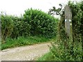 SE3837 : Barwick and Scholes parish paths waymarks by Christine Johnstone