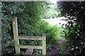 SJ8375 : Leaving Yarwoods drive by Peter Turner