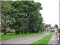 SE3635 : Penda's Grove, north side by Christine Johnstone