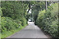 SJ8173 : Peover Lane by Peter Turner