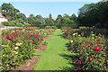 TQ8010 : Rose garden, Alexandra Park by Oast House Archive