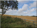 NX0758 : Farmland near Culreoch by Billy McCrorie