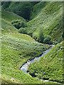 SN7453 : Afon Doethie Fawr, Ceredigion : Week 30