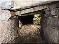 NG5436 : Iron Age souterrain by James Allan