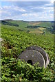 SK2285 : Millstones in the bracken by Stanage Edge by Neil Theasby