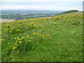 TQ4605 : View from field above Firle Bostal by Ian Yarham