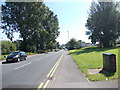 SE2935 : Cambridge Road - viewed from Servia Road by Betty Longbottom