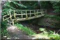 NT5418 : Footbridge over the Hassendean Burn by Jim Barton
