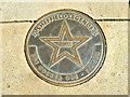 Photo of Joe Cocker bronze plaque