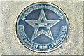 Photo of Derek Dooley bronze plaque