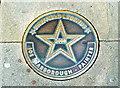 Photo of Joe Scarborough bronze plaque