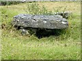 SK2057 : Minninglow Cist (dolmen 2) by Rob Howl