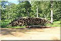 SP0612 : Log pile, Chedworth woods by Terry Jacombs