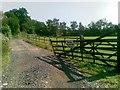 SU9187 : Hedsor Equestrian Centre by Alex McGregor