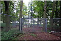 SP9730 : Mobile phone mast in the woods by Philip Jeffrey