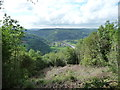 ST5498 : View from Offa's Dyke Path down to Tintern Abbey ruins by Jeremy Bolwell