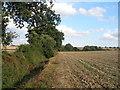 SE4506 : Barnsley Boundary Walk south of Clayton by John Slater