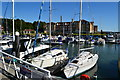 SZ5094 : East Cowes Marina by David Martin