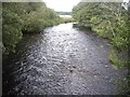 NO5697 : Downstream view from the footbridge over one arm of the River Dee by Stanley Howe