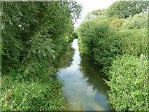 SP9321 : River Ouzel by Mr Biz