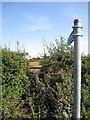 SP9342 : Path to Bayley Gate Farm by Philip Jeffrey