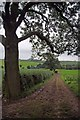SJ7844 : Bridleway To Madley by Glyn Baker