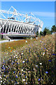 TQ3783 : Meadow by the Olympic Stadium by Oast House Archive