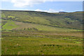 SH8908 : Moorland south of Nant-hir farm by Nigel Brown
