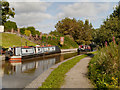 SJ6475 : Narrowboats at Anderton by David Dixon