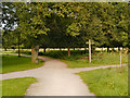 SJ6576 : Paths Meet, Marbury Country Park by David Dixon