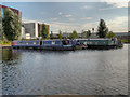 SJ8598 : The New Islington Marina by David Dixon