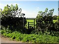 SJ4957 : Footpath to Tattenhall by Jeff Buck