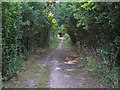 TM0614 : Path through the wooded boundary by Roger Jones