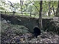 SJ9788 : Bridge across footpath in Mellor by Chris Morgan