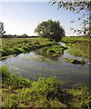 SJ9123 : River Sow by Derek Harper