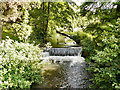 SO8405 : Painswick Stream Weir, Stratford Park, Stroud by David Dixon