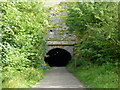 SK1871 : Entrance to Headstone Tunnel by Ruth Sharville
