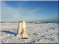 NT5861 : Trig point at summit of Meikle Says Law by Trevor Littlewood