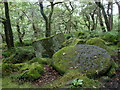 SK2579 : Millstone in woodland by the Padley Gorge footpath by Andrew Hill