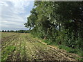 TL1059 : Field boundary off Little Staughton Road  by JThomas