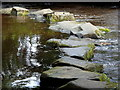 SK2181 : River Derwent stepping stones by Andrew Hill