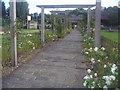 TQ2472 : The pergola in Wimbledon Park by David Howard