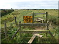 TF6636 : PUBLIC FOOTPATH TOP OF BANK by Richard Humphrey