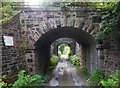 SK0183 : Twin-arched Railway Bridge over Gowhole Lane by Jonathan Clitheroe