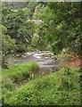 SN9584 : Afon Hafren at Llanidloes by Derek Harper