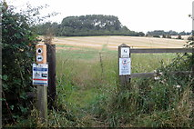 SP9833 : Path to Higher Berry End by Philip Jeffrey