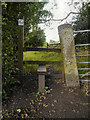SJ9387 : Stile and Gate at Torkington by David Dixon