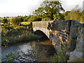 SJ9885 : River Goyt, Hague Bridge by David Dixon